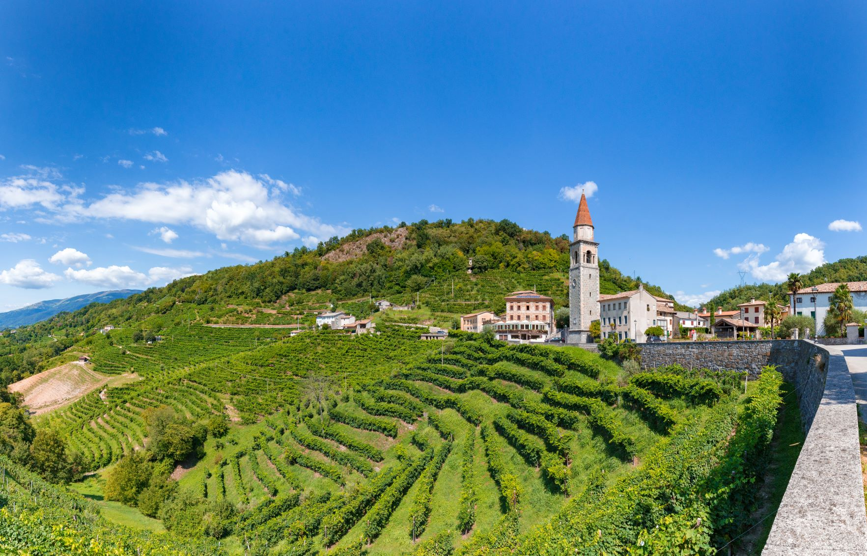 Taste of Prosecco Cycling