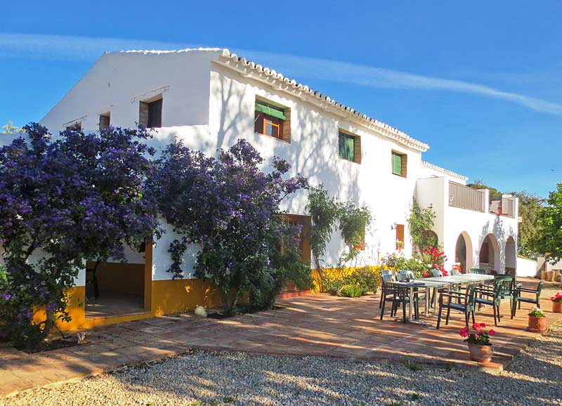 The patio at the Cortijo, where paella is served