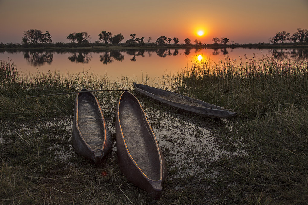 March's winning image by Peter Anderson in Botswana