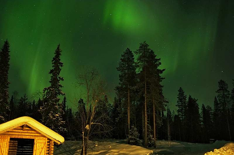 Northern lights over Basecamp Oulanka