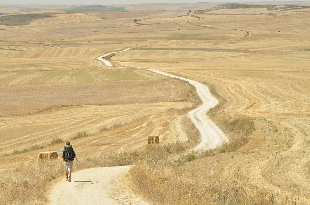 Walking on the Camino de Santiago