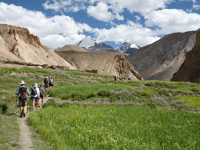Trekking towards Tachungtse with Kang Yangtse in the background