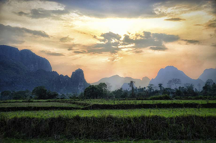 Paddy fields, Laos