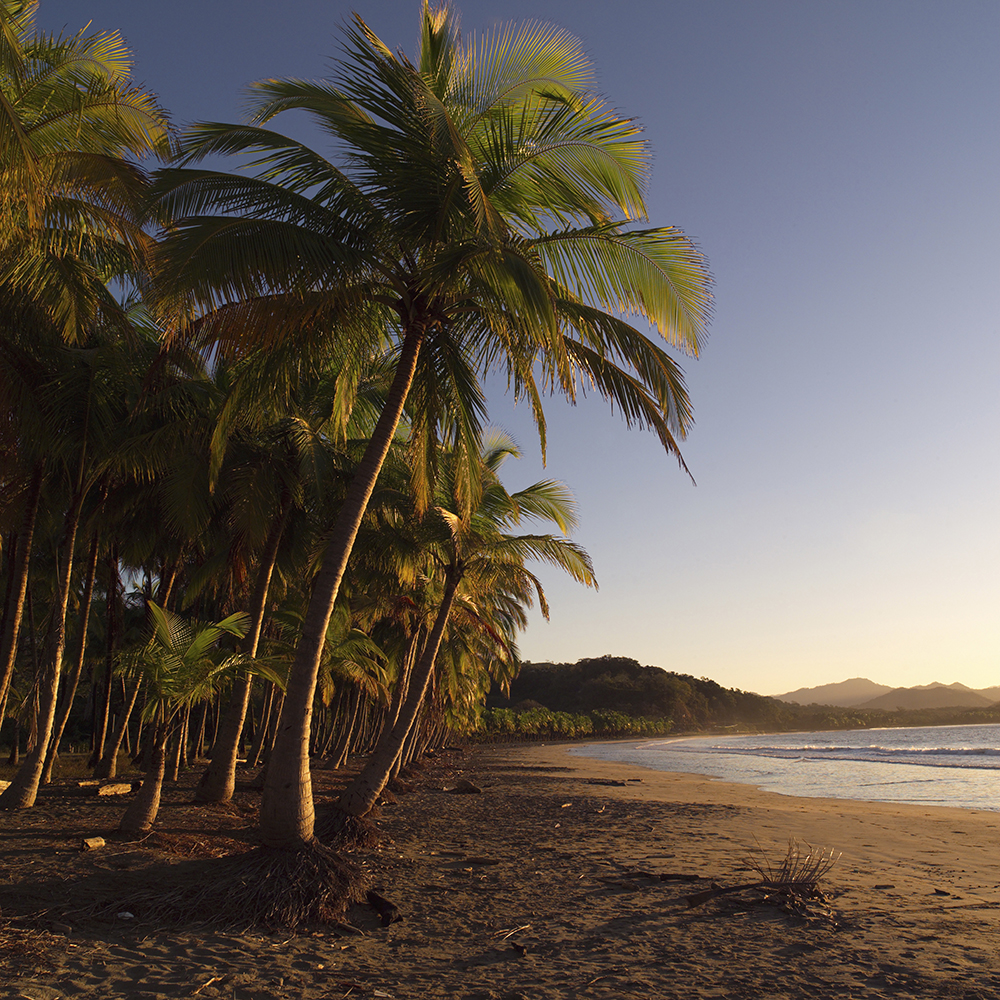 Coast of Costa Rica