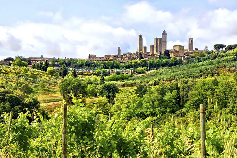 View of San Gimignano from vineyards