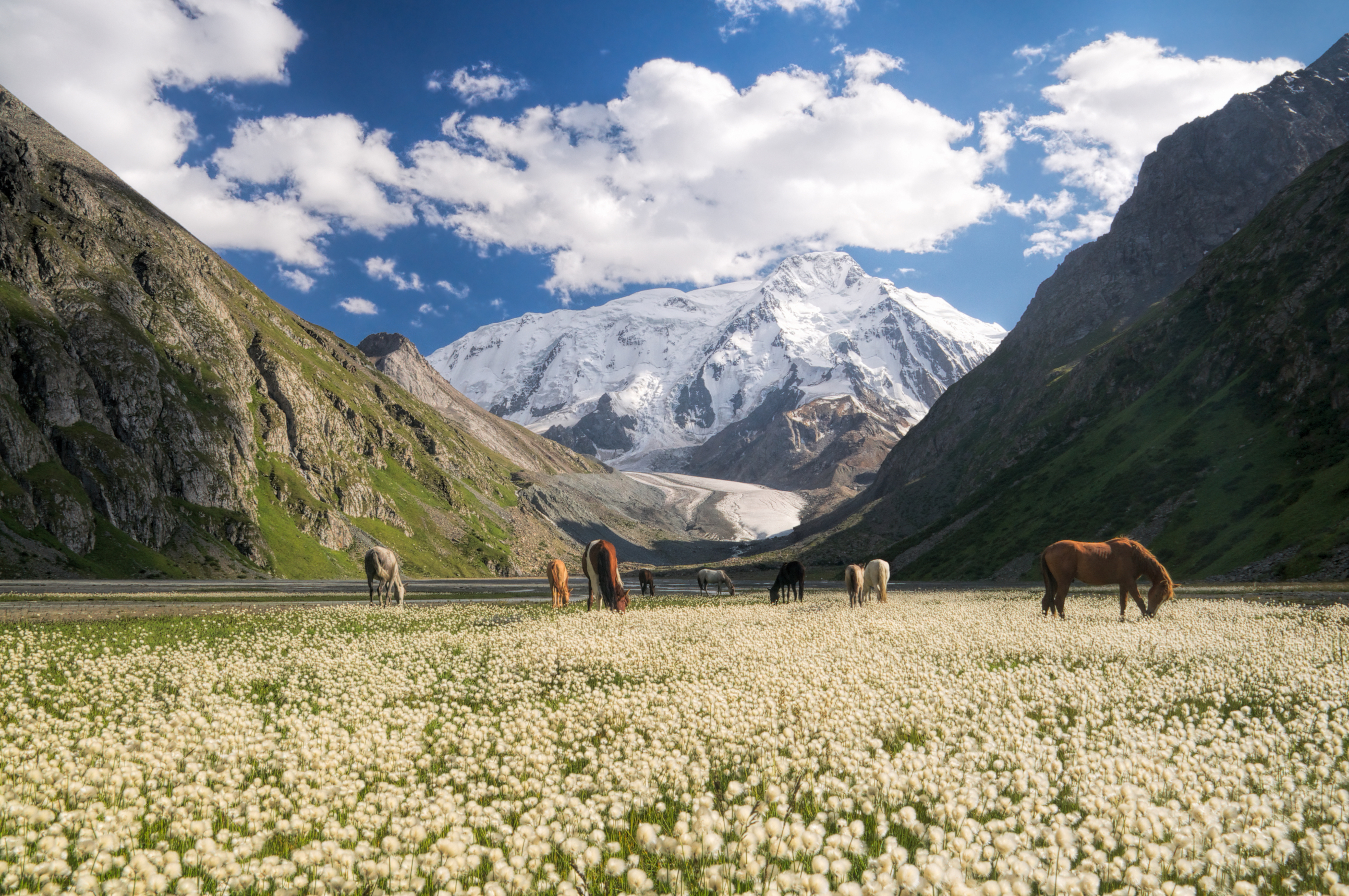 The Tien Shan Mountains