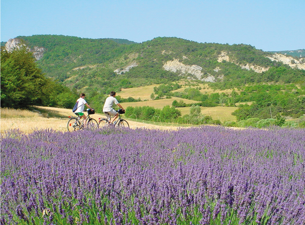 Headwater - Self-Guided Cycling in Provence & the Luberon