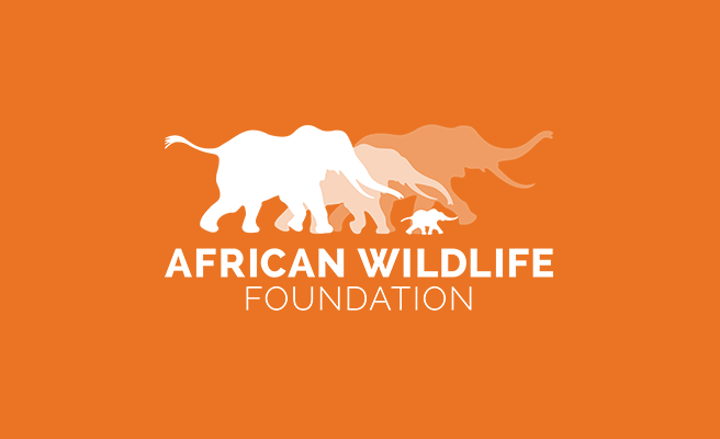 Zimbabwe, the Wild Zambezi & Victoria Falls with AWF