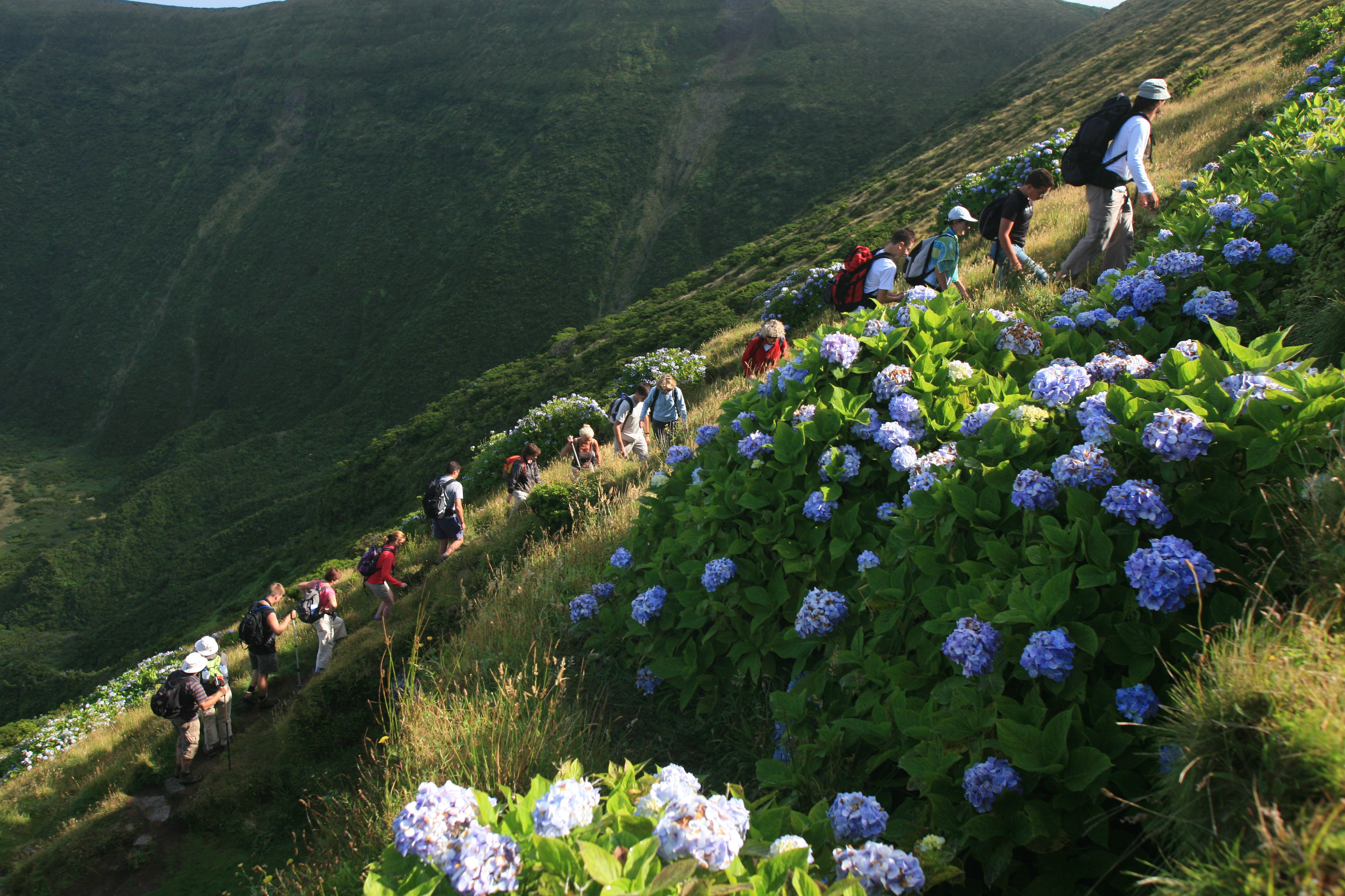 Walking in the Azores