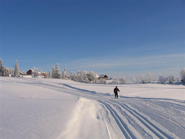 Cross-country Skiing: Kamben