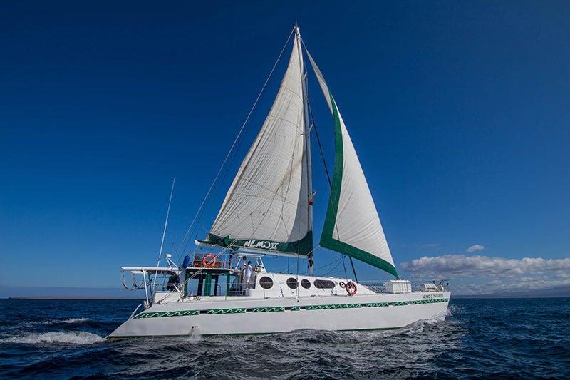Galapagos Adventure - Nemo II (Itinerary A)