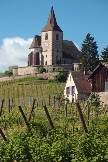 Headwater - Wine Villages Of Alsace Self-guided Cycling