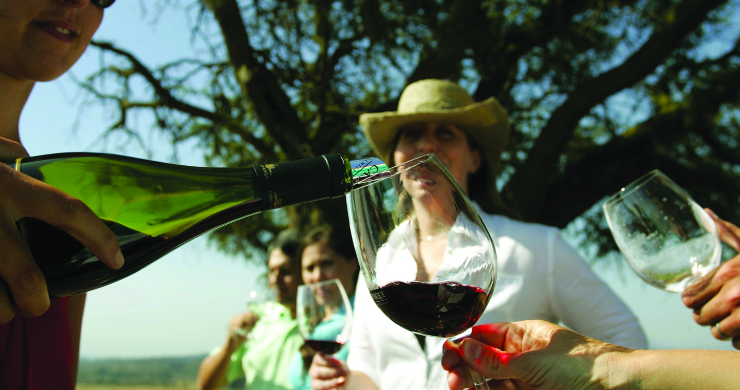 Wine & Wildlife of Chile & Argentina
