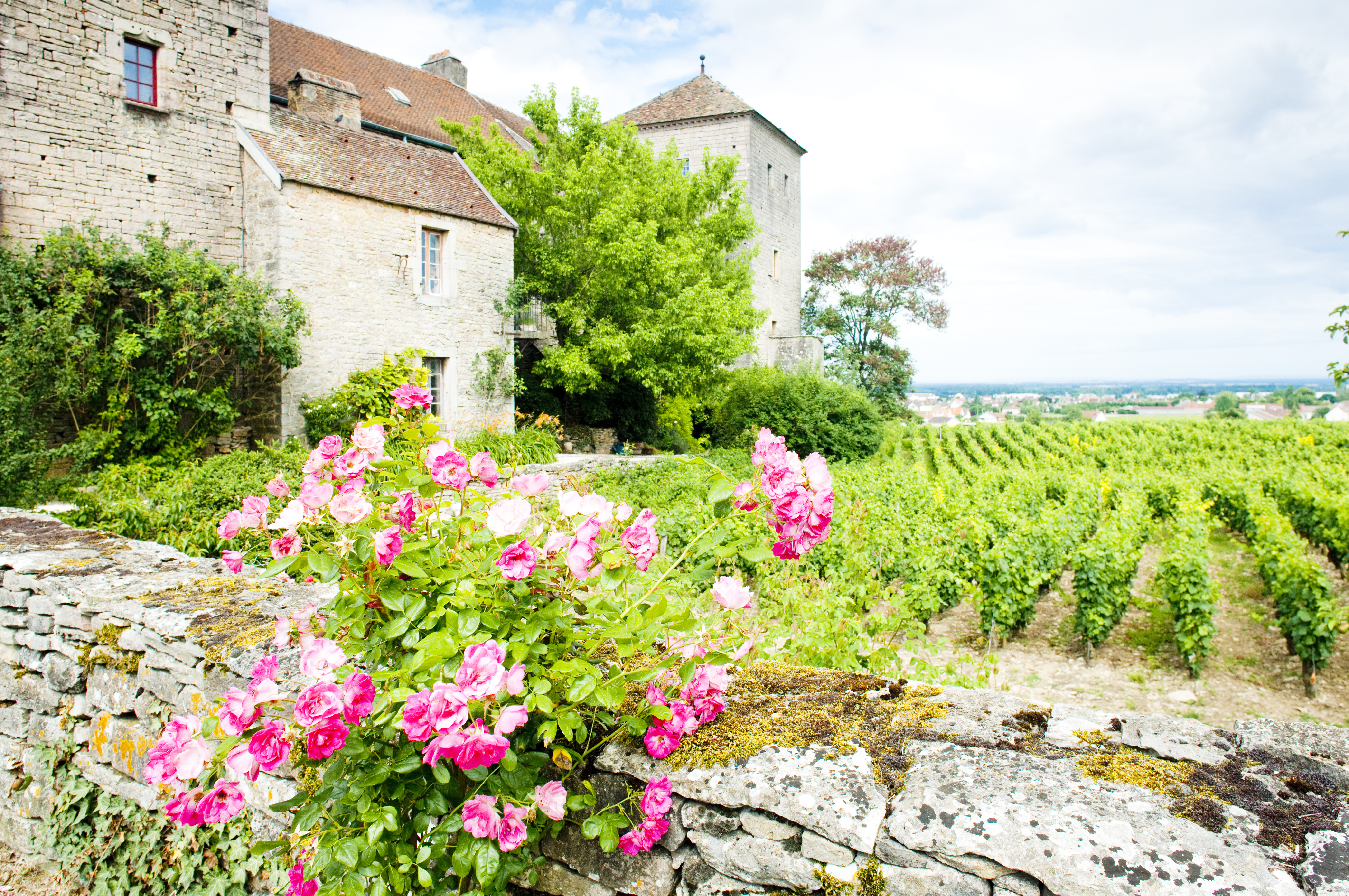 Headwater - Gastronomic Burgundy Self-guided Cycling