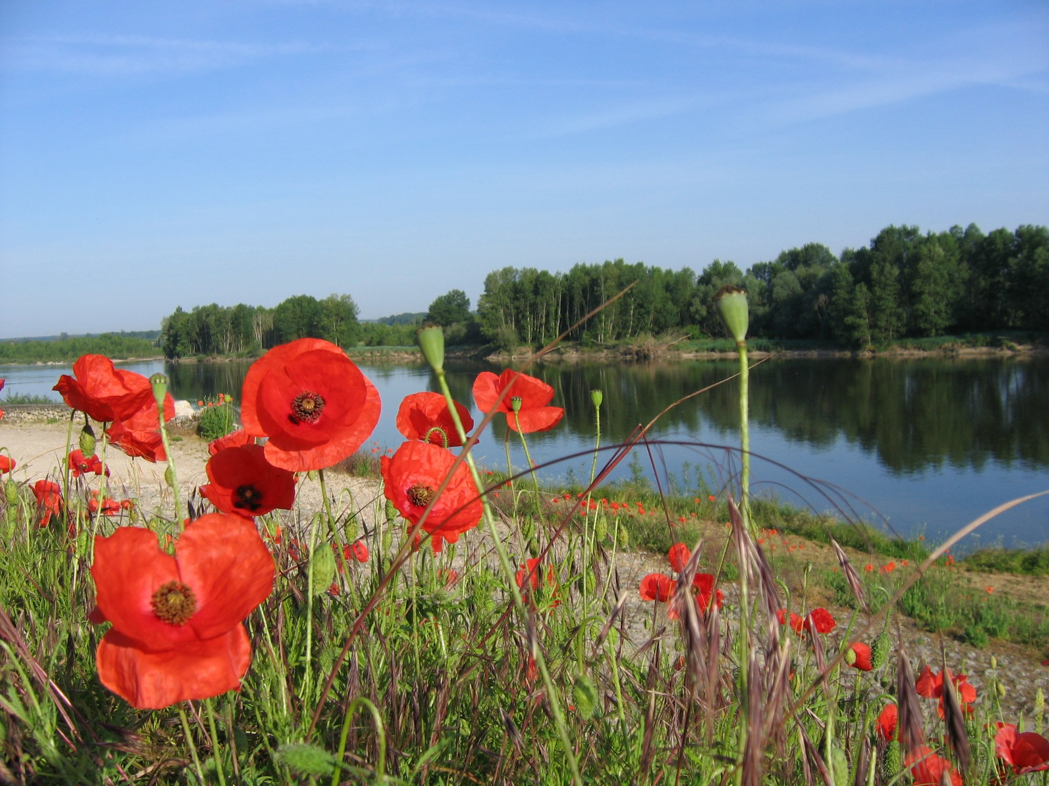 Cycling The UNESCO Loire Valley - Deluxe