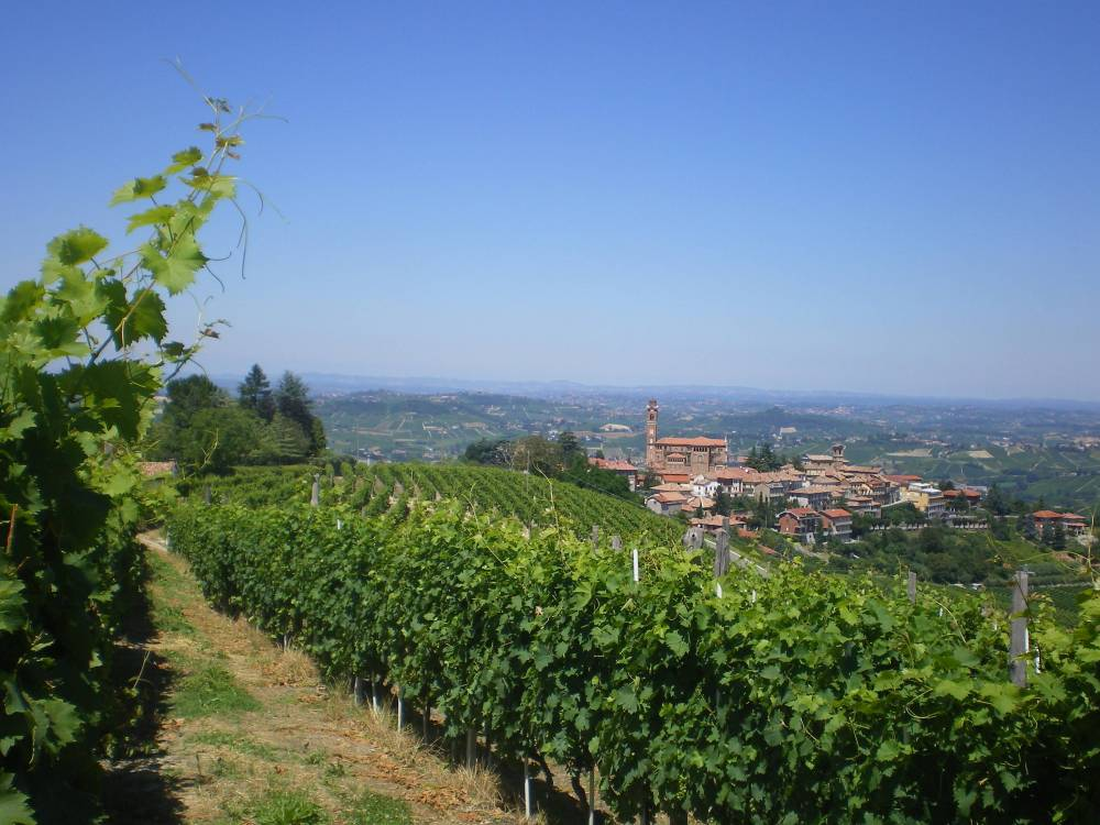 Walking the Wine Villages of Piedmont