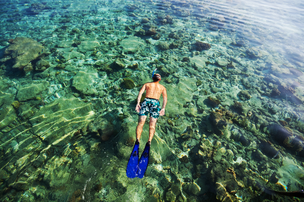 Ultimate Maldives: A Snorkelling and Diving Adventure