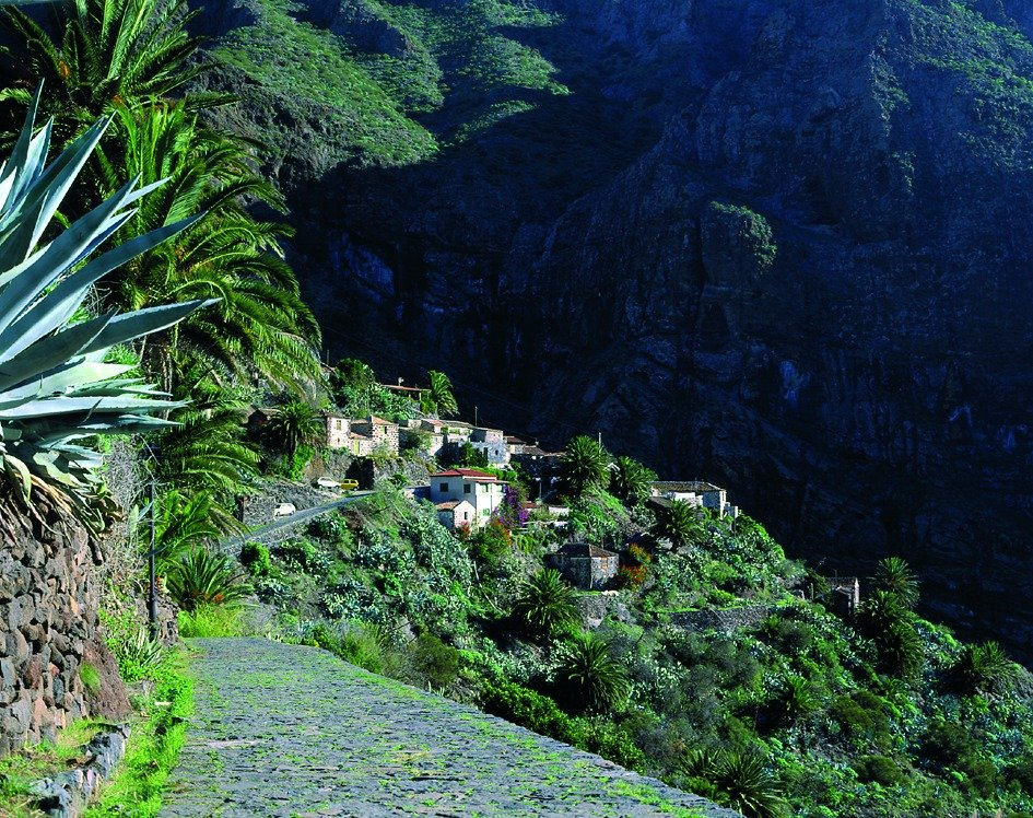 Secrets of Tenerife Walk