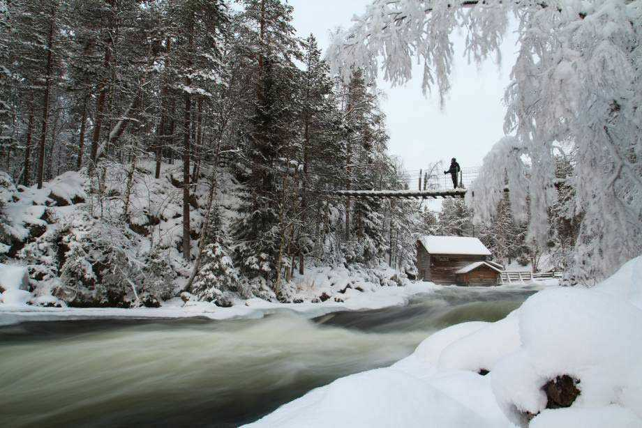 Oulanka National Park in winter