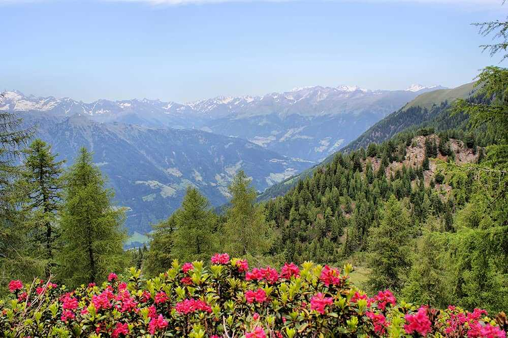Austrian mountain scenery