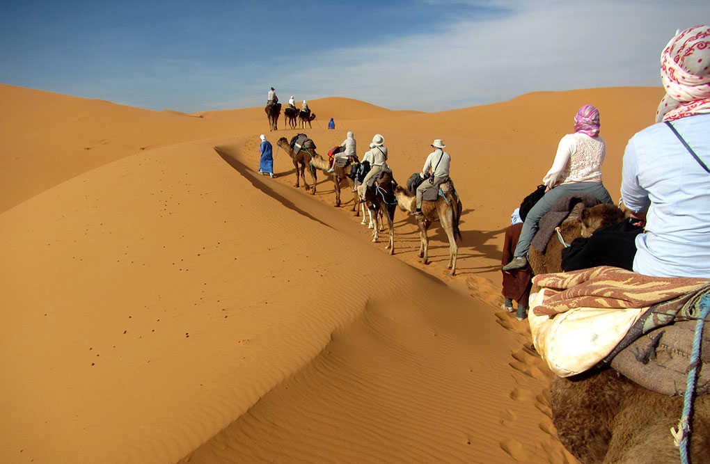Riding camels through the Moroccan desert