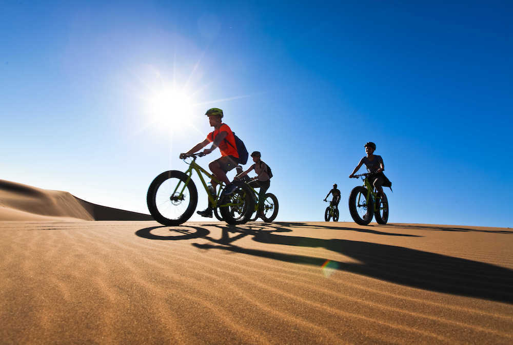 Cycling in the Namibian desert