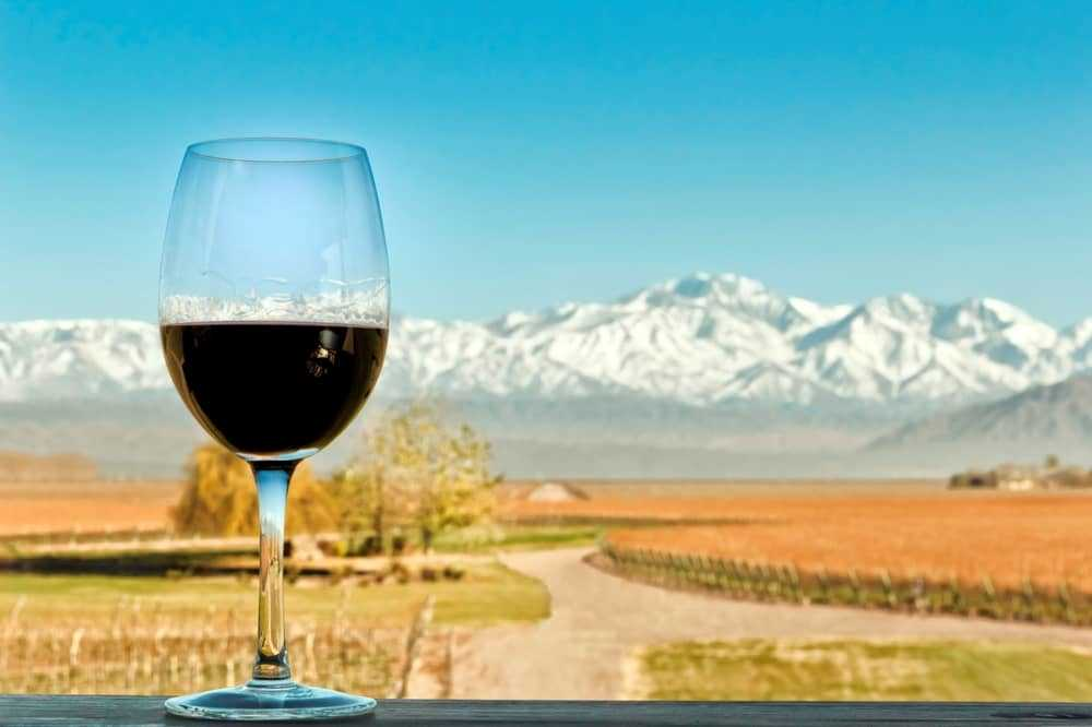 malbec and mountains