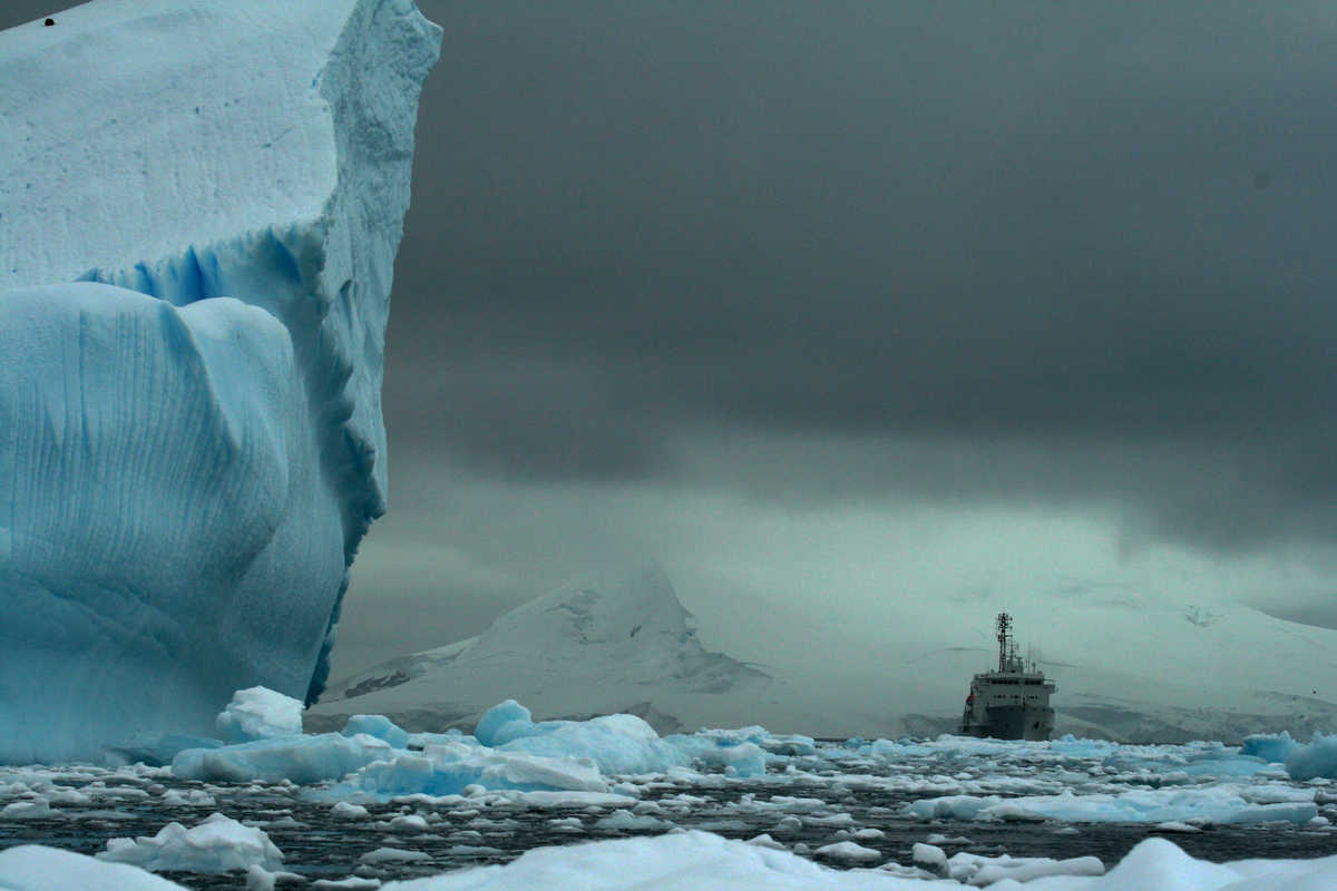 The AkademiK Ioffe amongst ice, Antarctica