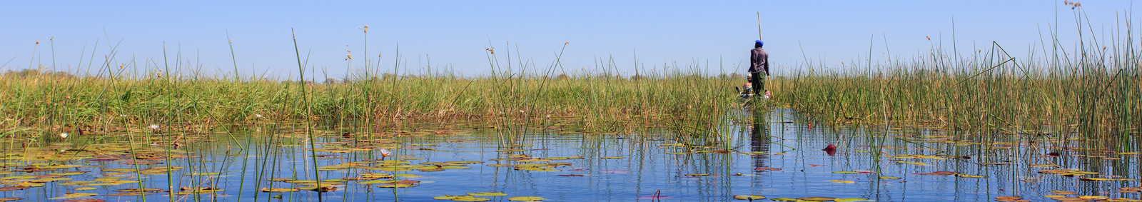 Traditional mokoro canoe in The Okavango Delta, Maun, Botswana