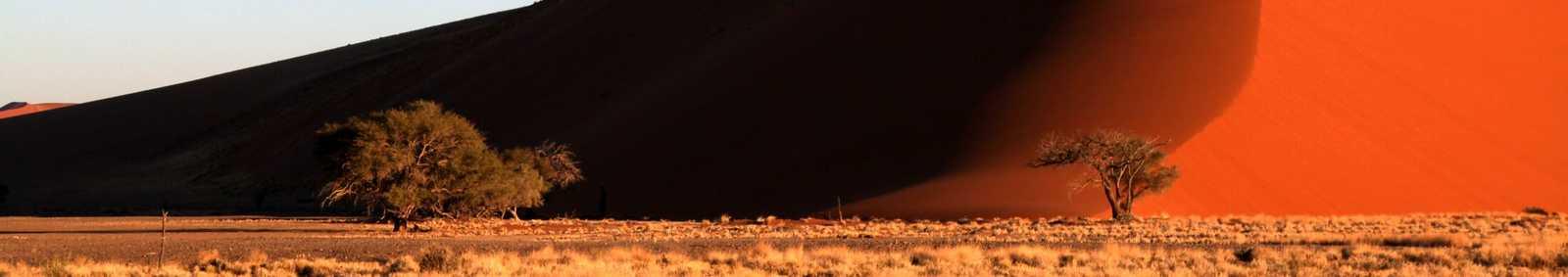 Sand dune in the Namib desert, Namibia