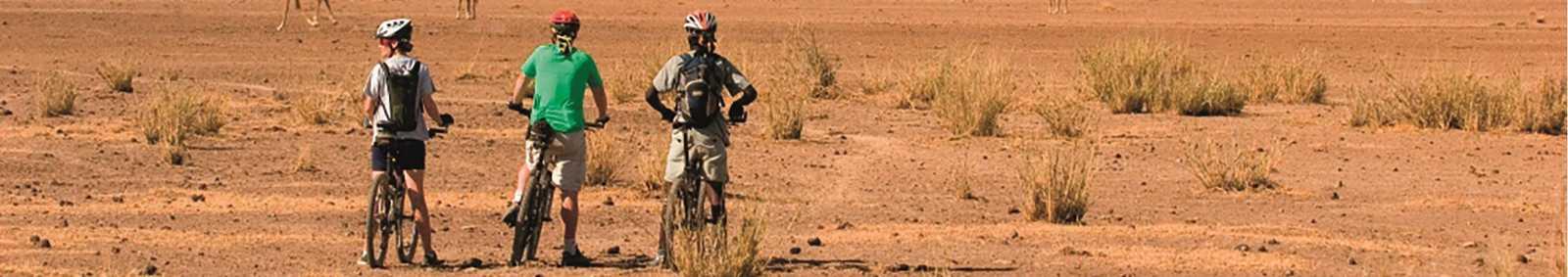 cycling safari
