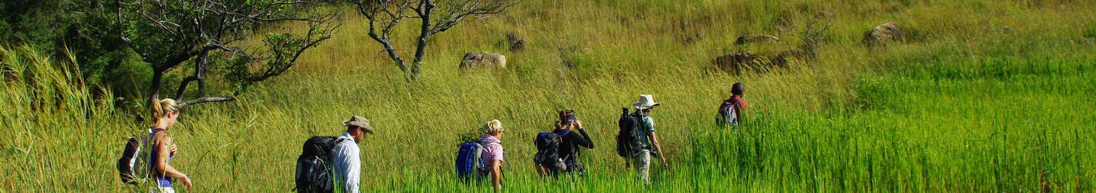 walking in Madagascar