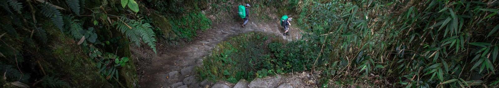 Exodus Porters on the Inca Trail