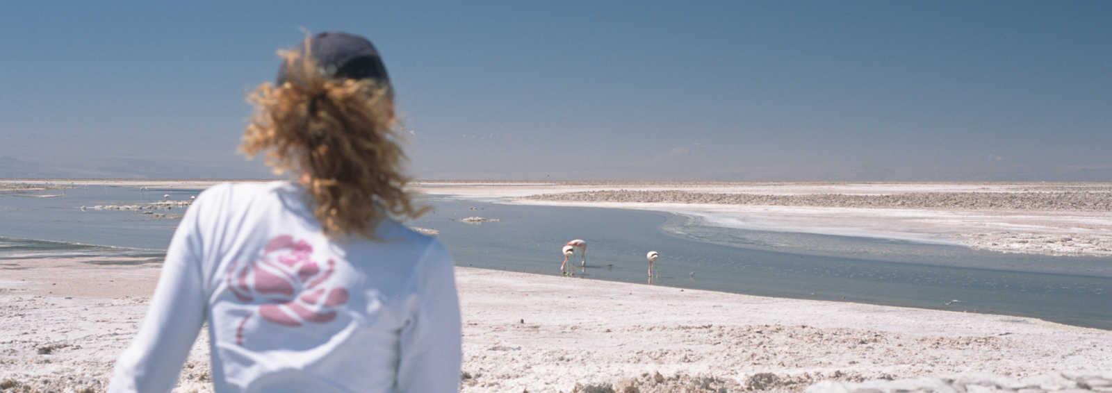 Client watching flamingoes, salt lake, Atacama Desert