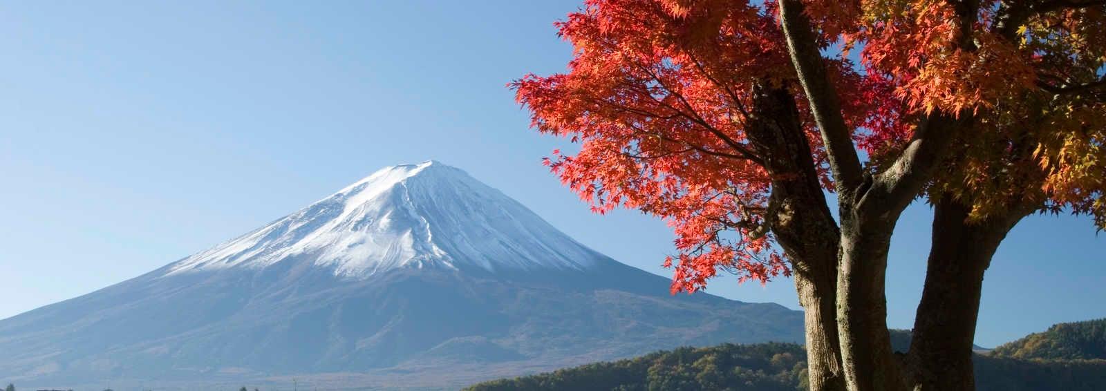 Mt Fuji in Autumn, Japan
