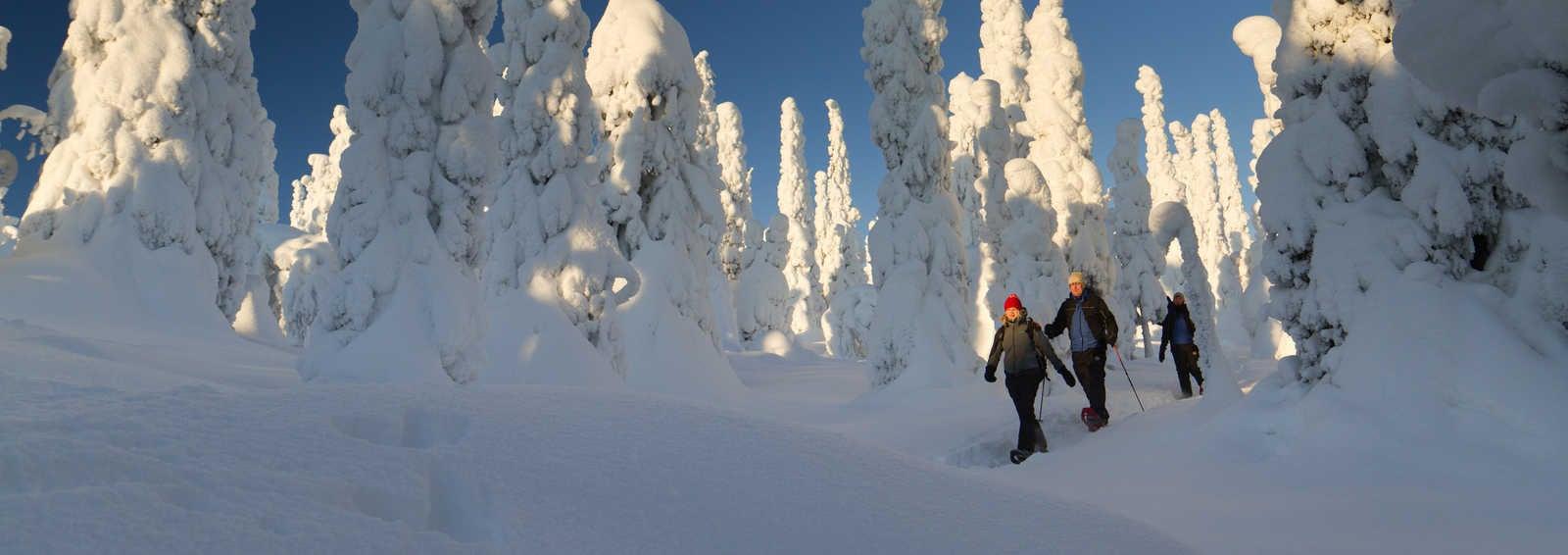 Snowshoeing in Riisitunturi National Park (photo by Erkki Ollila).