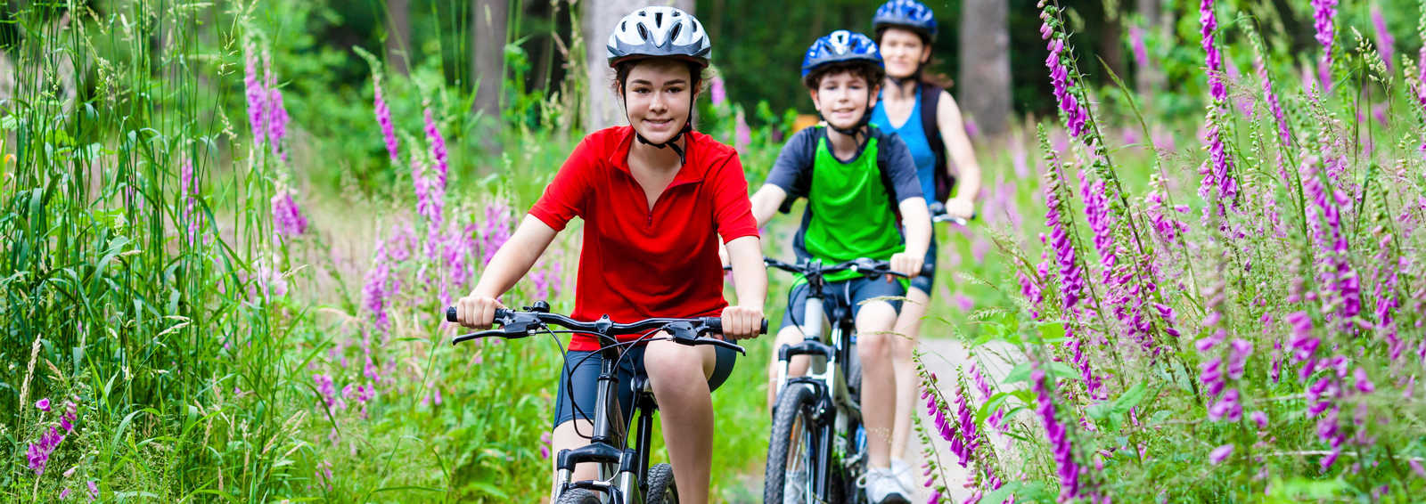 Family cycling through woodland