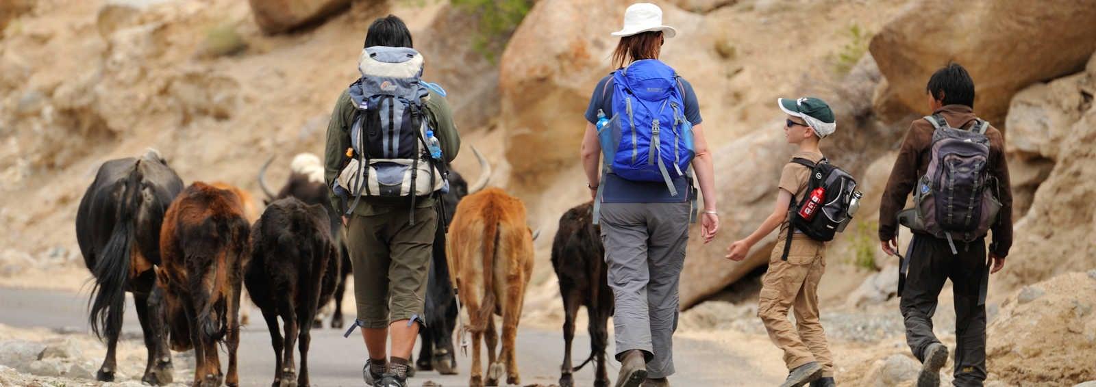 Family on trek in Ladakh
