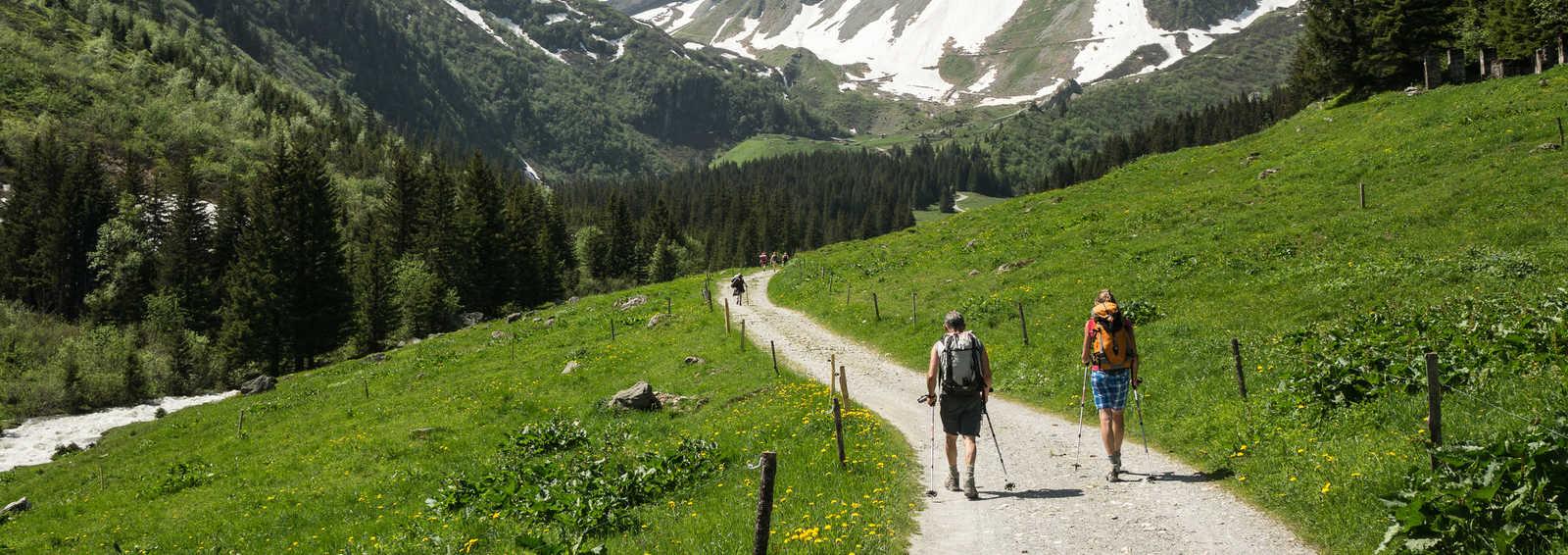 Trekking in the Alps, Tour du Mont Blanc