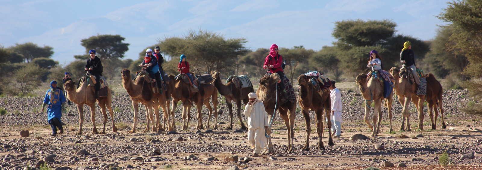 50-70% Rabatt die beste Einstellung bis zu 80% sparen Camels & Kasbahs Family Holiday
