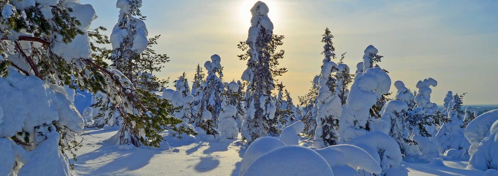 Winter scene, Finland