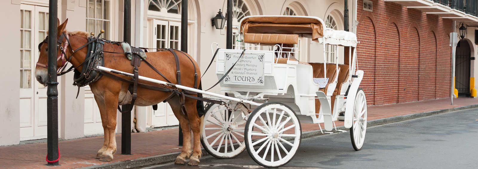 Horse and Cart French quarter, New Orleans