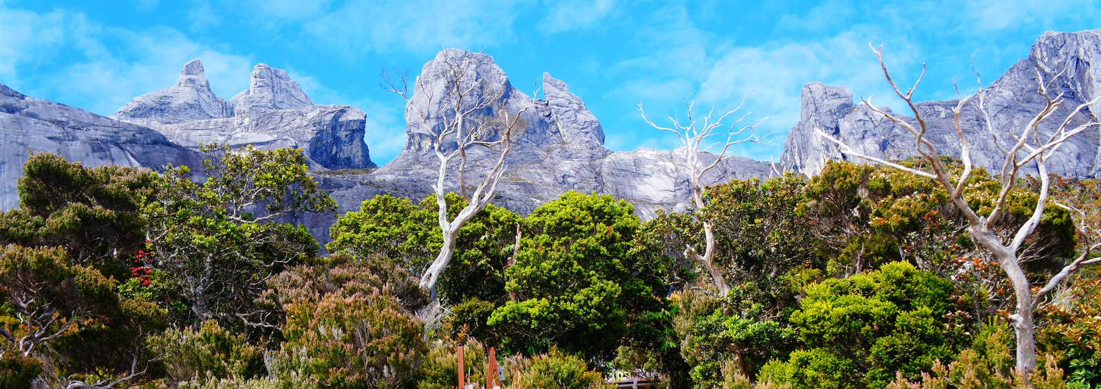 Mt Kinabalu trek, Malaysia