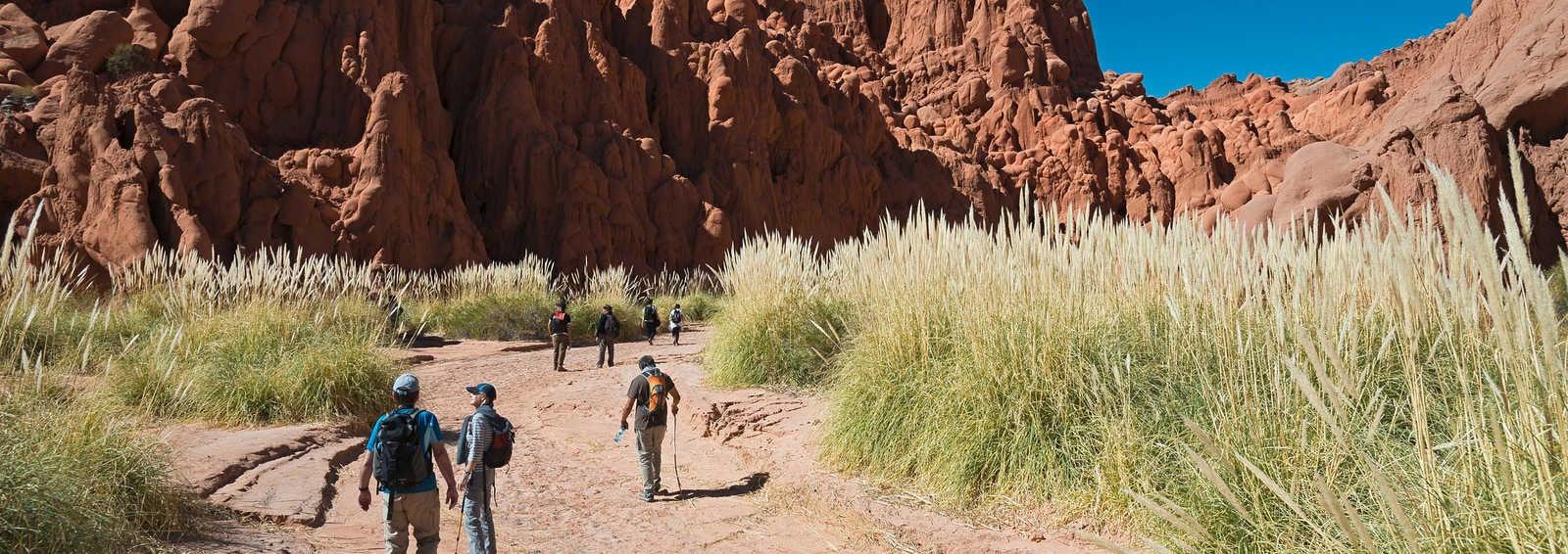 Walking in Northwest Argentina