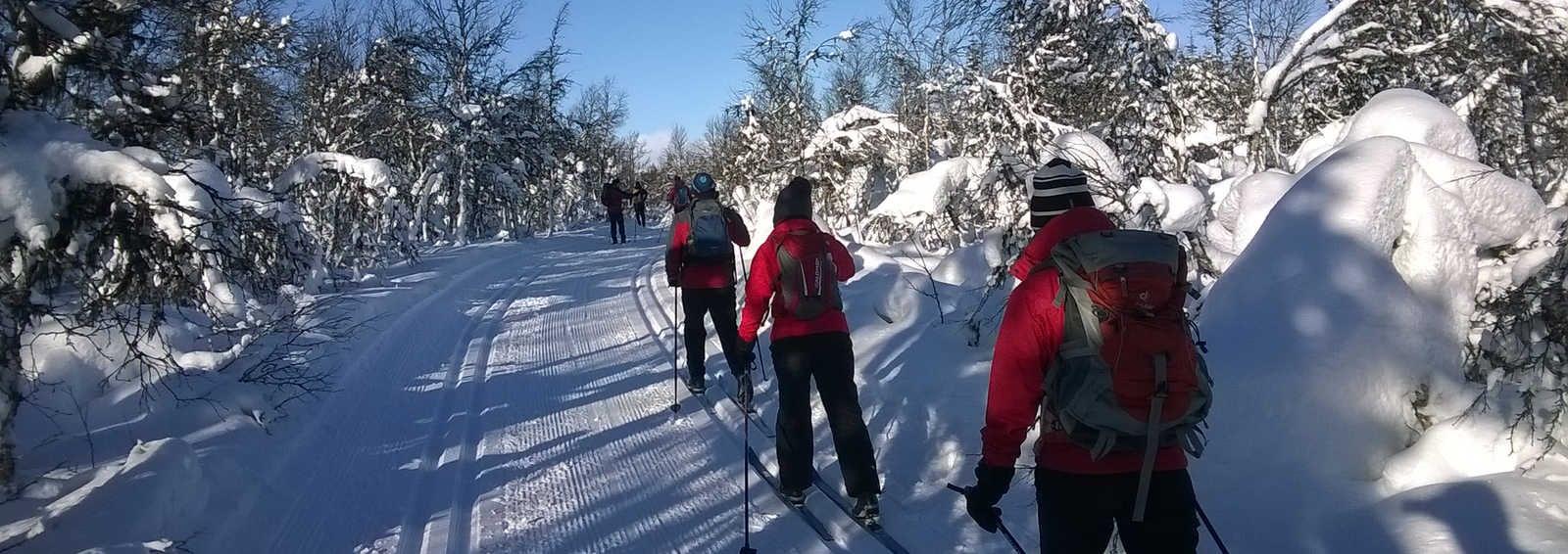 Cross-country skiing in Trimloipe in Venabu mountains