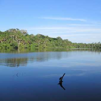 Anaconda? In this lake?!