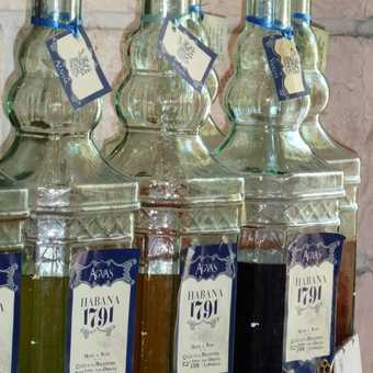 Perfume at Havana
