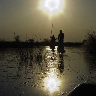 Okavamgo at sunset