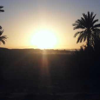 sun rise in the sahara