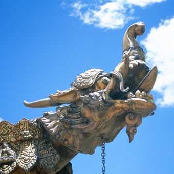 Dragons on the Jokang